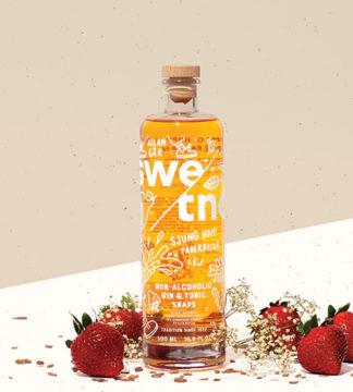 Gin & Tonic-snaps Alkoholfri