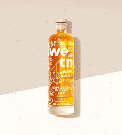 Alkoholfri Gin & Tonic-snaps