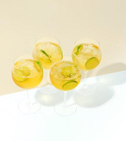 Orrefors Gin & Tonic 4-pack